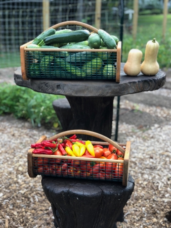 Staging the veggies on the table